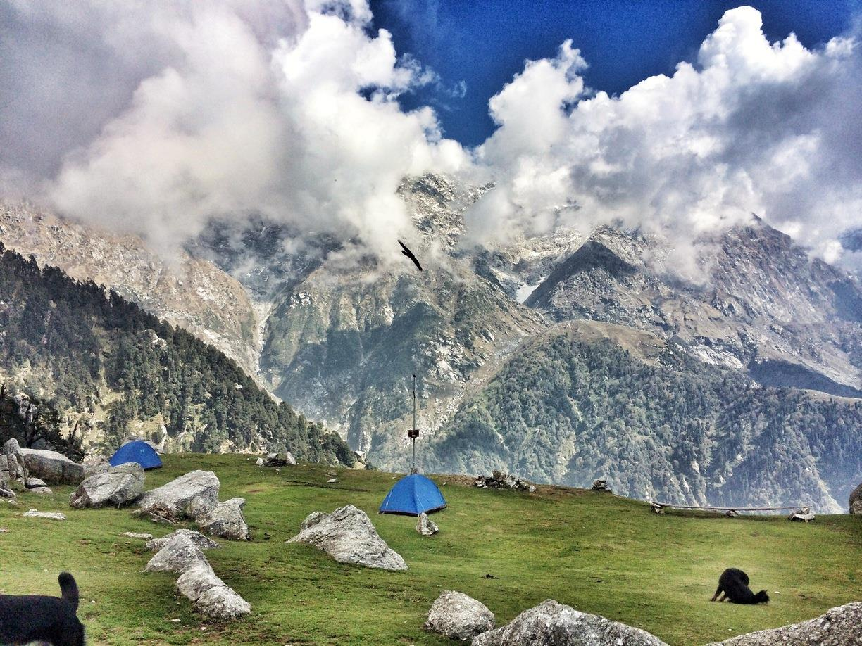 Trek to Triund , Snow Line and Lhas Cave.